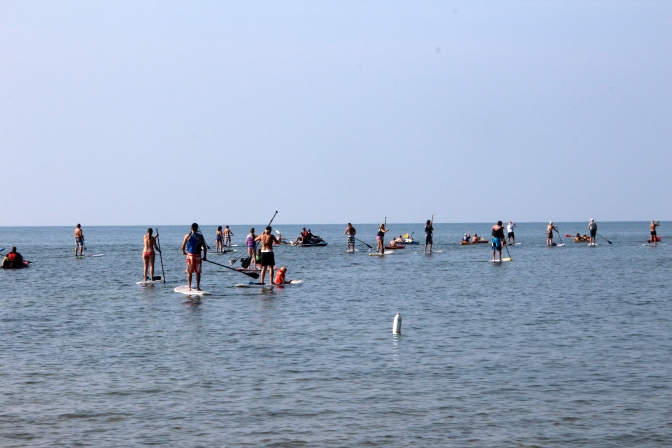 Labor Day Paddle Board meeting updates and more