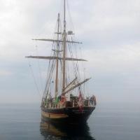 Tall ships at Da' reef